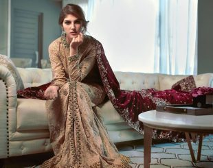 Elnaaz Norouzi Model Indian Look Saree Magazine Photoshoot